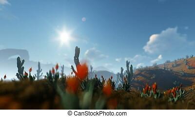 Saguaro Cactus in Desert, camera panning, 4K
