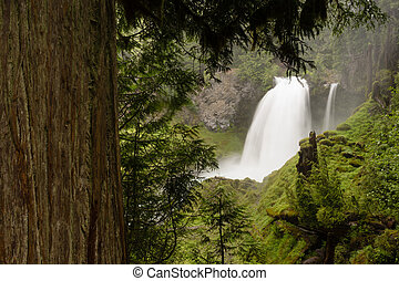 Sahalie Falls outputs a lot of water during the summer run off