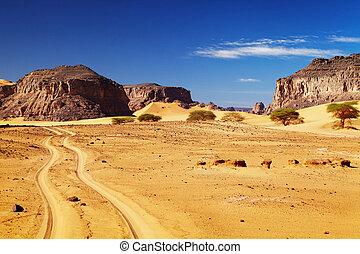 Sahara Desert, Algeria - Road in Sahara Desert, Tadrart,...