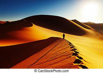 Sahara Desert, Algeria - Sand dune climbing at sunrise,...