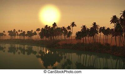 Sahara Desert Oasis Sunset Egypt - (1273) Egyptian Sahara...