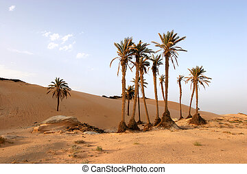 Sahara desert - Sahara Desert, popular travel destination.