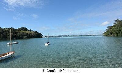 Sail boats mooring New Zealand - Old wooden yachts mooring...