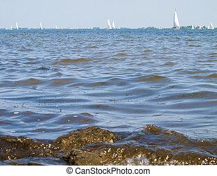 sail boats sailing on the sea