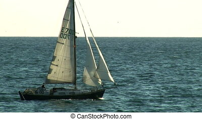 Sailboat - A little sailboat is cruising