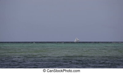 Sailboat floats on sea