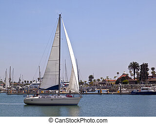 Sailboat in Point Loma Harbor. - Sailboat cruising near...