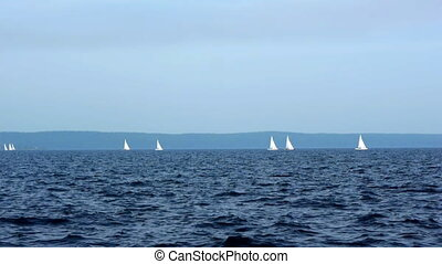 Sailboat in regatta on blue sea
