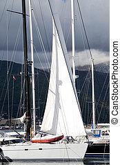 Sailboat in the marina