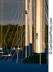 Sailboat masts in a row