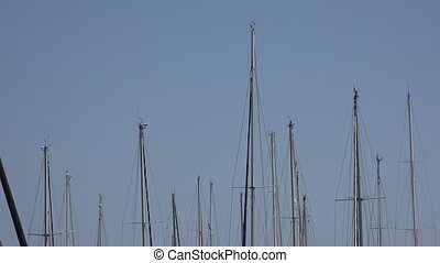 Sailboat Masts In Harbor