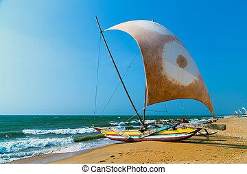 sailboat on the sea coast, nautical Sri Lanka