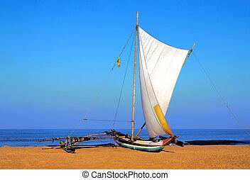 sailboat on the sea coast, Sri Lanka