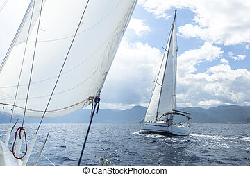 Sailboat race. Sailing on a calm sea. Luxury yachts.