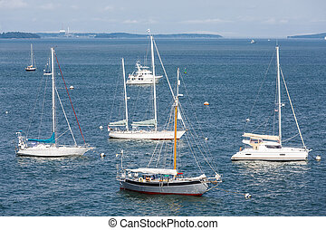 Sailboats and Cabin Cruiser on Blue