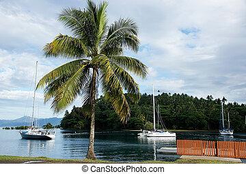 Sailboats at Savusavu harbor, Vanua Levu island, Fiji