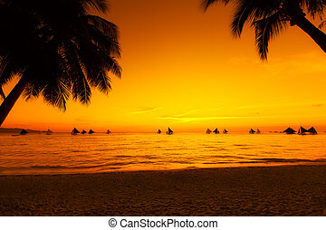 Sailboats at sunset on a tropical sea. Palms on the beach....