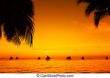 Sailboats at sunset on a tropical sea. Palms on the beach. ...