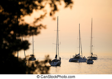 Sailboats in Adriatic sea at sunset - A view of a group of...