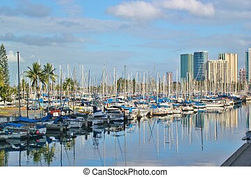 Sailboats in the harbor 5