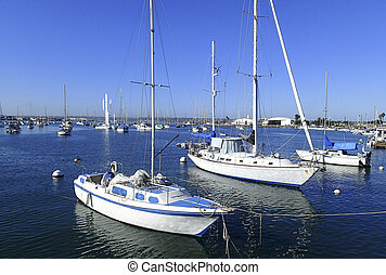 Sailboats moored in a San Diego marina