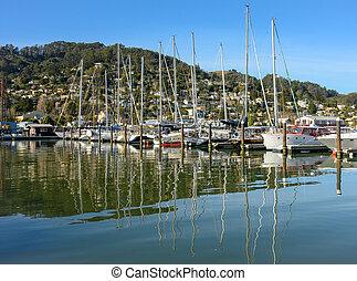 Sailboats on Blue Sky Day