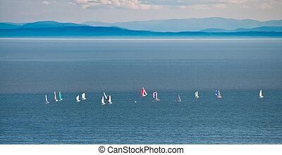sailboats on sunny day