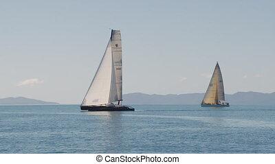 Sailboats sailing on a great ocean