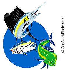 Sailfish dolphin fish tuna - retro style illustration of a...