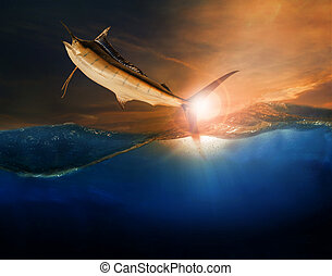 sailfish flying over blue sea ocean use for marine life and beautiful aquatic nature