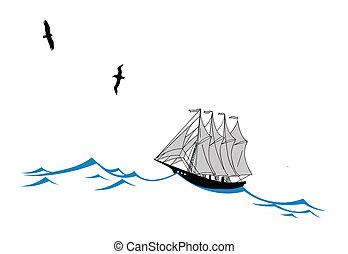 sailfish, wektor, sylwetka, ilustracja, machać, tło, biały