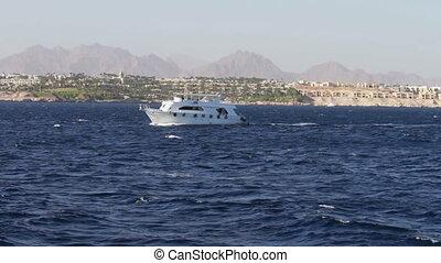 Sailing boat at the Red sea