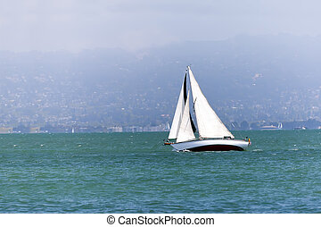 sailing boat in the bay - Yacht sailing in the San Francisco...