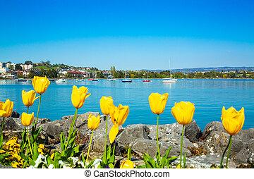 Sailing boats in Lausanne port on Lake Geneva