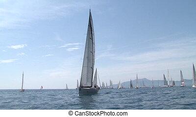 Sailing boats waiting for a race - Sailing boats navigating,...