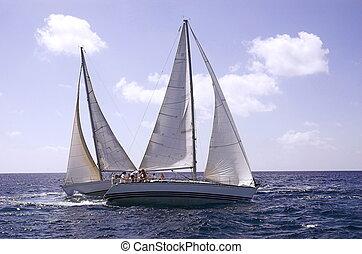 sailing in a champi