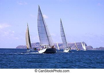 Sailing in a champio