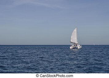 sailing in the sea catamaran