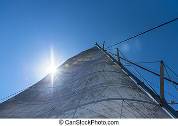 Sailing in the Sunshine