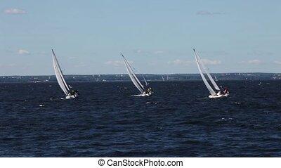 sailing race
