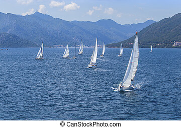 Sailing regatta.