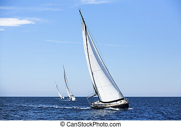Sailing ship yachts with white sails. Luxury yachts.