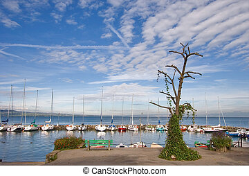 Sailing vessels wait for tourists - Walking yachts in small ...