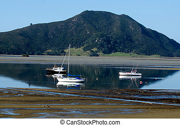 Sailing yachts in Northland, New Zealand.