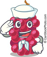 Sailor mulberry fruit on a cartoon table vector illustration