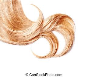 sain, isolé, cheveux, blonds, boucle, blanc