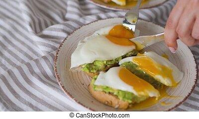 sain, partage, egg., breakfast., toast, avocat, vegan