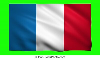 Saint-Barthelemy flag on green screen for chroma key