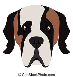Saint Bernard avatar