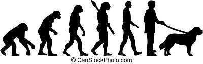 Saint Bernard Evolution with name